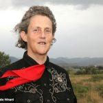 Dr Grandin Temple